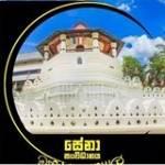 Sugath Herath Profile Picture