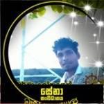 Senethu Nishan Nishan Senethu Profile Picture