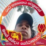 Lalith Rohan Profile Picture