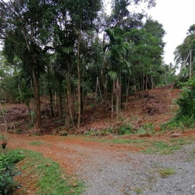 Land For Sale - Kegalle Profile Picture