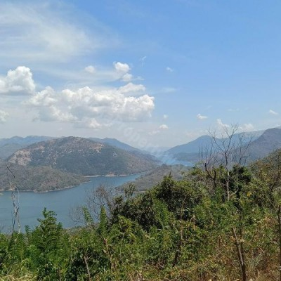 Urgent Sale for Bare Land in Badulla Profile Picture