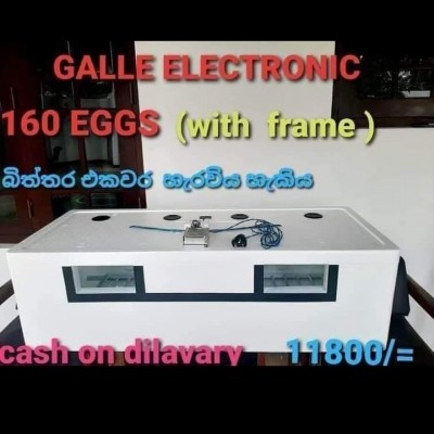 Galle Electronic Profile Picture