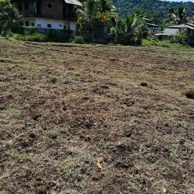 Land for Sale - Kailagoda, Badulla Profile Picture