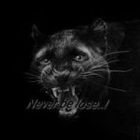Subhash Jayaweera Profile Picture