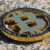 bitcoinevolutionpro1 Profile Picture