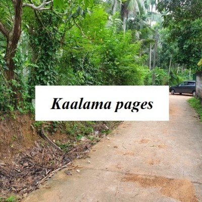 Land for Sale in Gampaha (Nelligahamula) Profile Picture