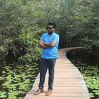 Hashan Withanage Profile Picture