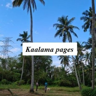 Land for Sale in Kandana Profile Picture