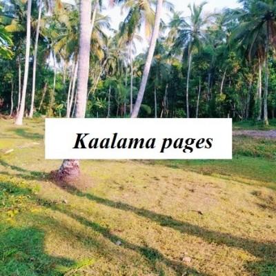 Land for Sale - Minuwangoda Profile Picture