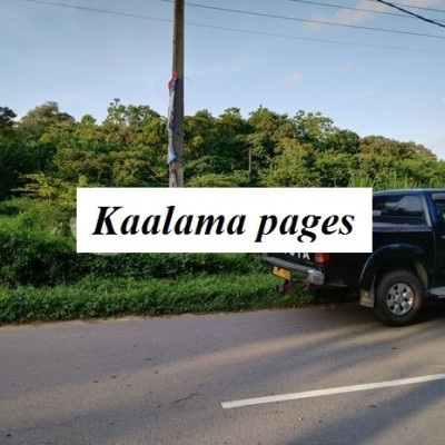 Valuable land in Labeema, Kamburugamuwa, Matara Profile Picture