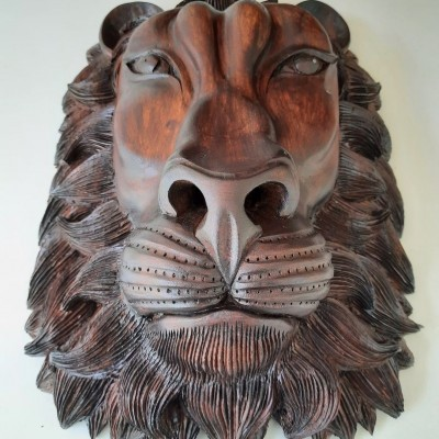 Lion Stue Profile Picture