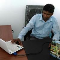 Neluka abeysinghe Profile Picture