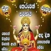 Prasad Ranasinghe Profile Picture