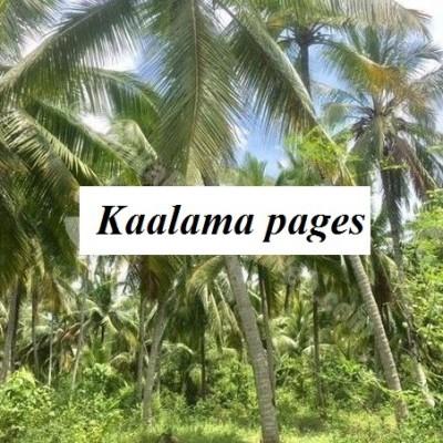Land for Sale in Kuliyapitiya Profile Picture