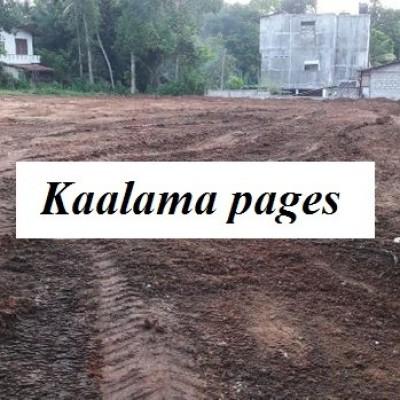 Land for Sale in Panadura Mahawila Miriswatta Profile Picture
