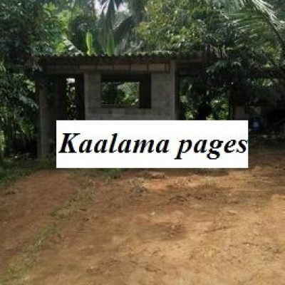 Land for Sale in Padukka Profile Picture
