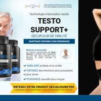 Testo Support Plus Profile Picture