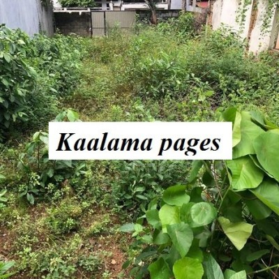 Land for Sale in Rajagiriya Profile Picture