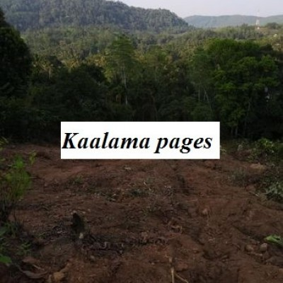 Land for Sale in Avissawella Profile Picture