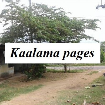River Front Land for sale in Kalutara Profile Picture
