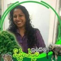 Duleeka Rathnaweera Profile Picture