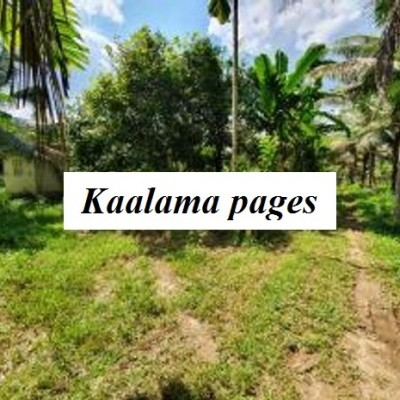 Land for Sale - Padukka Arukwatta Profile Picture