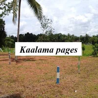 Land for sale polgasowita Profile Picture
