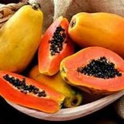 Papaya Wholesale (ගස්ලබු තොග) Profile Picture