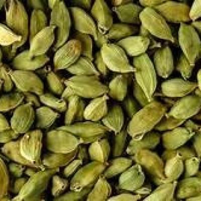 Cardamom Wholesale (එනසාල්තොග) Profile Picture