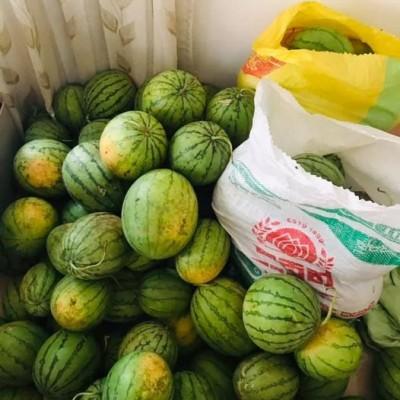 Watermelon Wholesale (කොමඩු තොග) Profile Picture