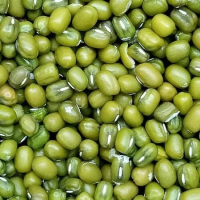 Green seeds Wholesale (මුං ඇට තොග) Profile Picture