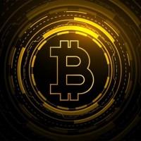 Kaalama Crypto Pro profile picture