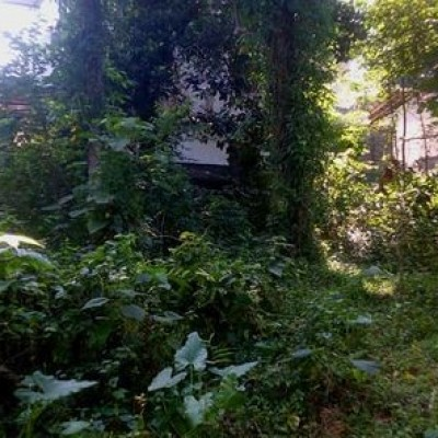 Land for Sale in Hikkaduwa Profile Picture