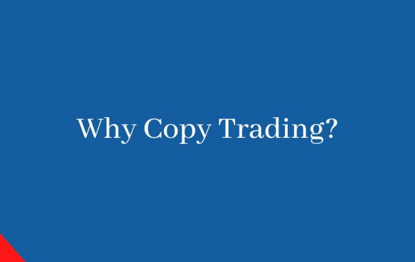 Crypto Copy Trading, why you need it?