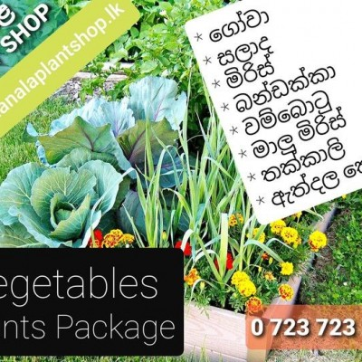 Organic Vegetables Profile Picture