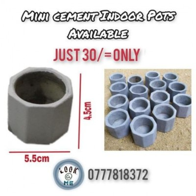 Mini Cement Indoor Pots Available Profile Picture